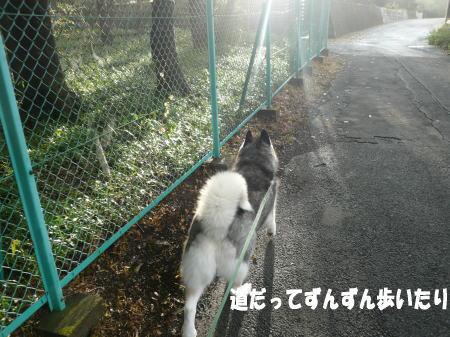 20120904_3.jpg