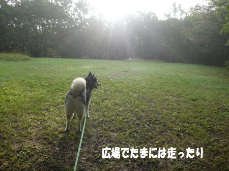 20120904_4.jpg