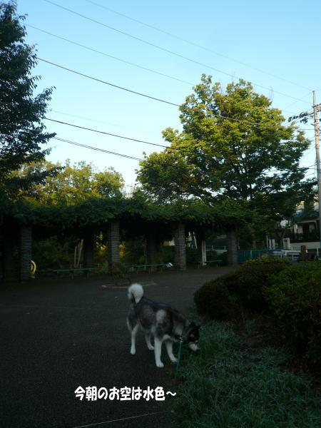 20120907_1.jpg