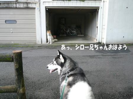 20120907_11.jpg