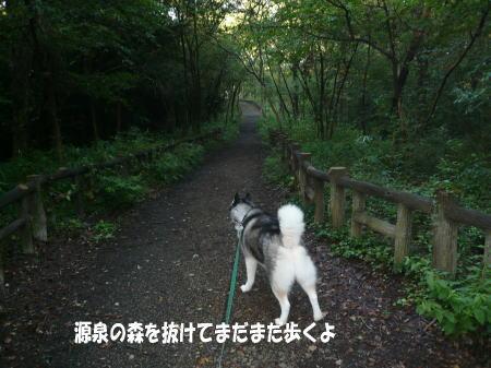 20120907_8.jpg