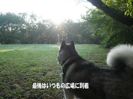 20120907_9.jpg