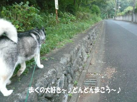 20120910_5.jpg