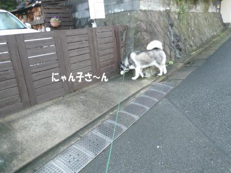 20120918_3.jpg