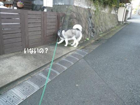 20120918_5.jpg