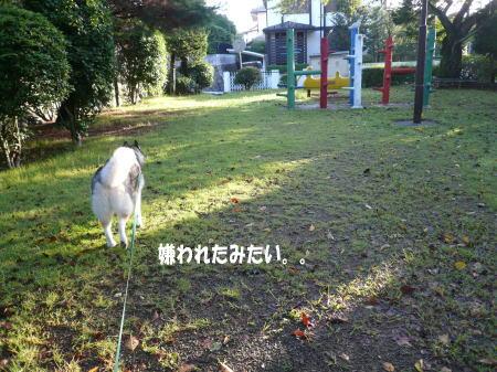 20120918_7.jpg