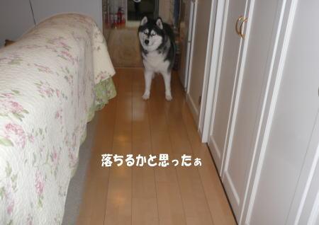 20120919_2.jpg