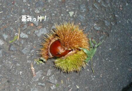 20121001_5.jpg