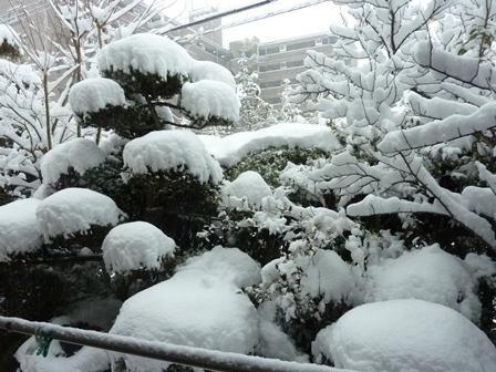 20130114大雪1