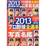 週刊ベースボール選手名鑑2013