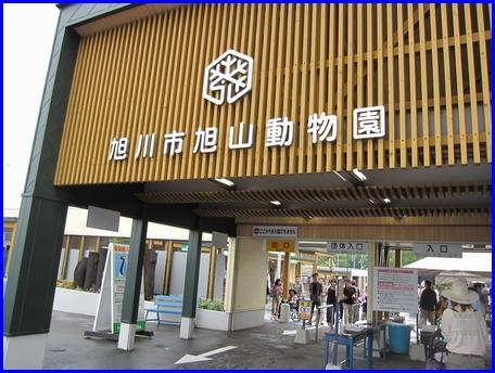 asahiyama-zoo-2011-8-21.jpg