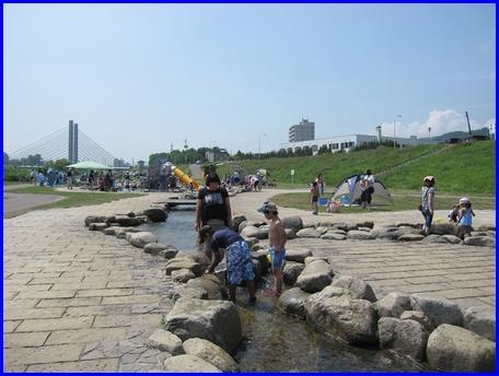 watergarden-2011-7-29.jpg