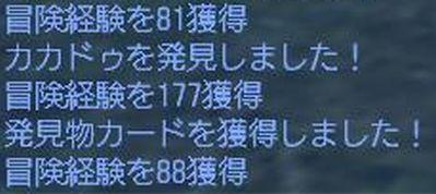 UO(110808-224208-22).jpg