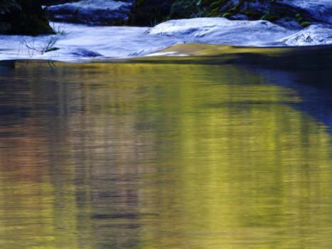 黄緑色に写る川