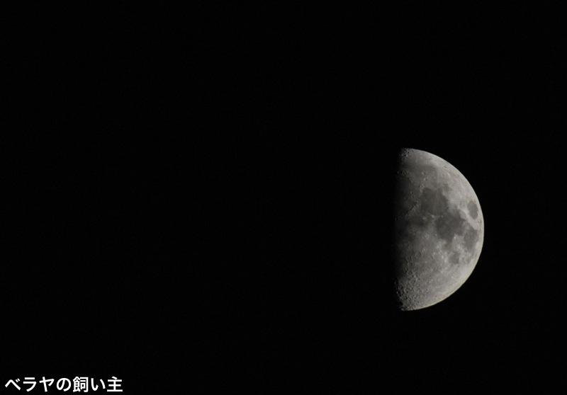 1Q_Moon.jpg
