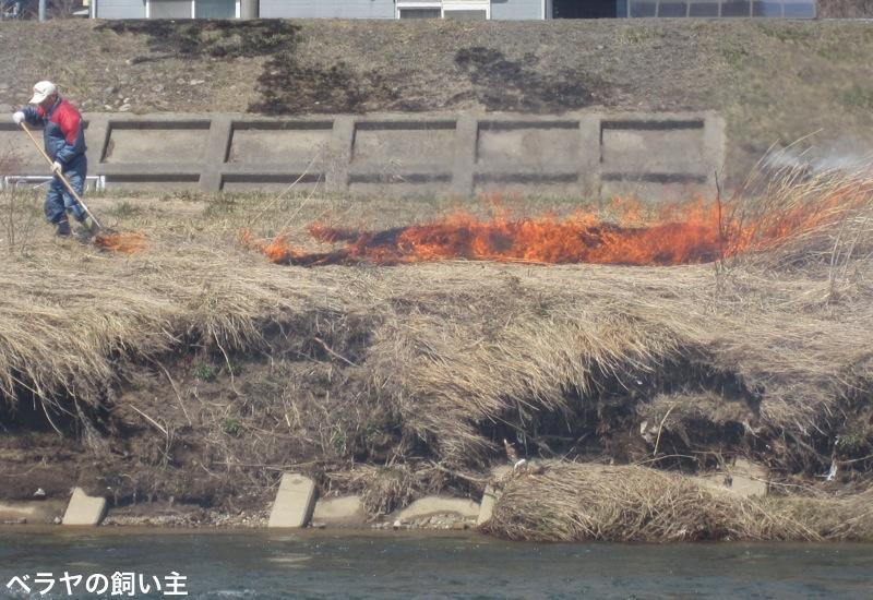 Fire5723.jpg