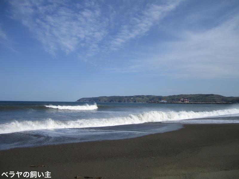 beach_6442.jpg