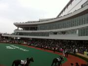 20120304_中京競馬場1