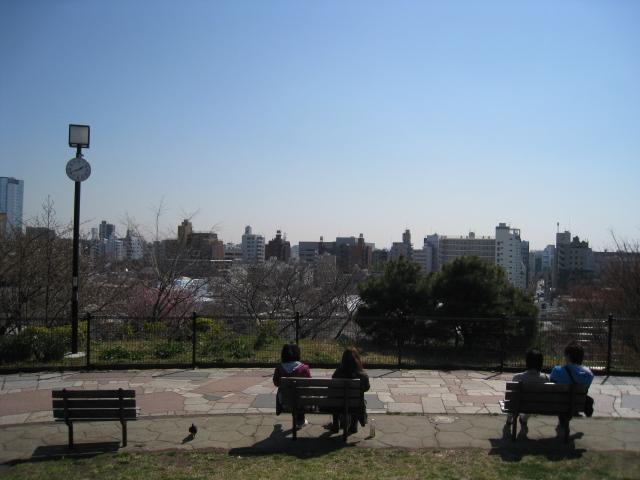 目黒川桜 017