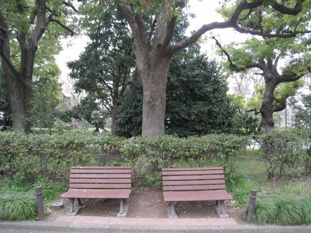北の丸公園 003
