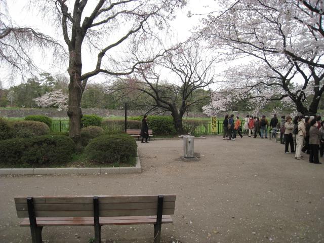 千鳥ヶ淵公園 006