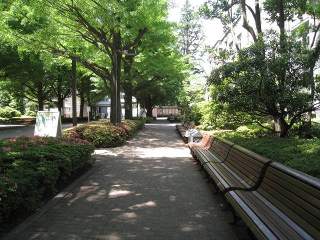 青山学院大学 003