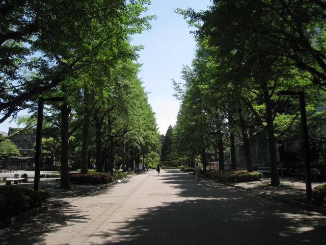 青山学院大学 001