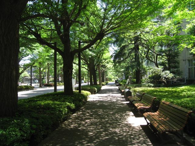 青山学院大学 023