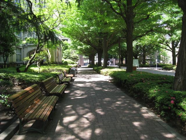 青山学院大学 022