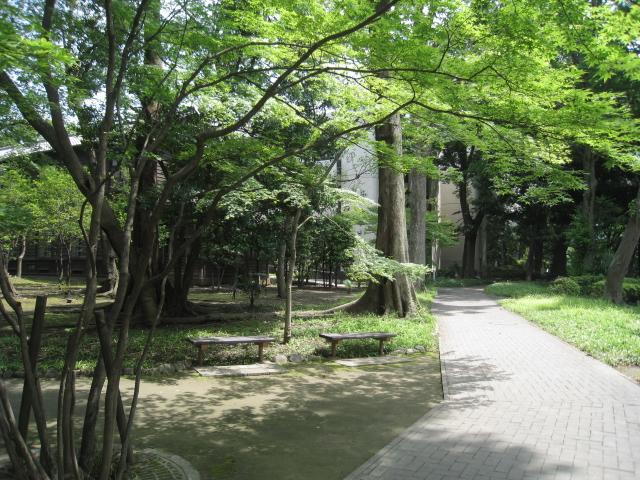 学習院大学 002