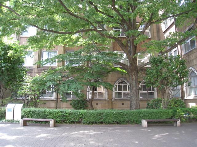 学習院大学 024