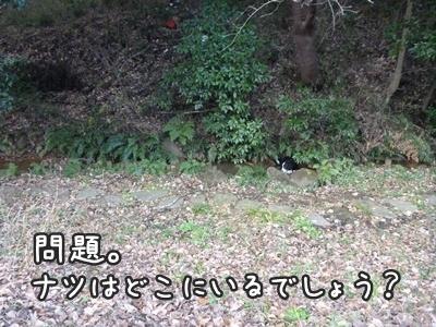 2010納め_1
