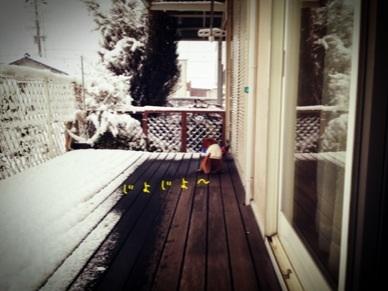 image_20130128205852.jpg