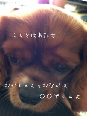 image_20130307143458.jpg