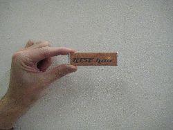 5_20101105144523.jpg