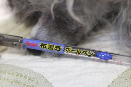 布書きボールペン