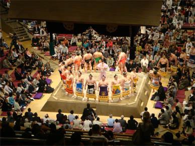May15,2010sumo1