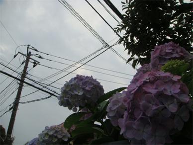 June28,2010sky1