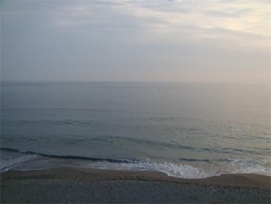 Nov7,2010sea1