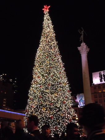20101126 xmas tree