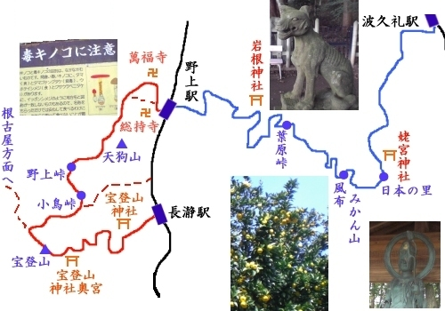 長瀞アルプス・トレイルラン タイトル