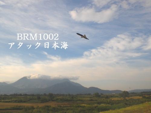 BRM1002タイトル