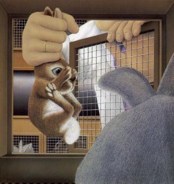 Lile aux lapins 7