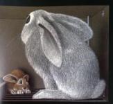 Lile aux lapins 8-1