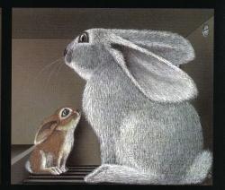 Lile aux lapins 8-3
