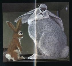 Lile aux lapins 9-2