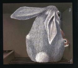 Lile aux lapins 9-3