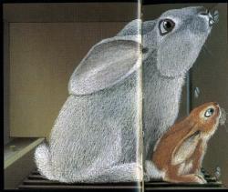 Lile aux lapins 10-1