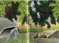 Lile aux lapins 26-2