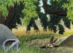 Lile aux lapins 26-3